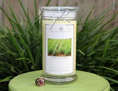 lemon grass by jewelry candles (JewelryCandles) Tags: christmas gifts consultant christmasgifts giveaways giftideas workfromhome soycandles xmasholidays christmascandles prizegiveaways giftsideas xmascandles earnmoneyfromhome halloweengiftideas jewelrycandles jewelrycandle jewelrycandlescom jewelrycandlecompany jewelrygiveaways soycandleswithjewelryinside jewelrycandlecom hiddenjewelryincandles candlegiveaways soycandleswithjewelry winagiveaway jewelrycandleconsultants sellcandles sellcandlesfromhome sellamazingcandles ilovegiveaways jewelryinsidecandle jewelryinsidecandles candleswithjewelryinside christmassoycandles jewelrycandlegifts