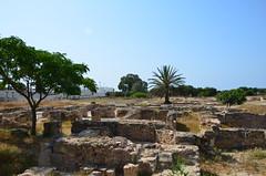 Roman-Byzantine site of Pupput (9) (Prof. Mortel) Tags: roman tunisia byzantine pupput