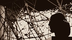 Nicolaus Copernicus (Nick Stewart2) Tags: statue manchester university cheshire observatory jodrellbank universityofmanchester radioastronomy nicolauscopernicus sirbernardlovell centreforastrophysics