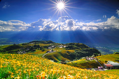 Shining at Mt. Sixty Ton@ (Vincent_Ting) Tags: sky star taiwan daylily  formosa  sunrays  milkyway hualian    hemerocallisfulva       clousd   starstrails