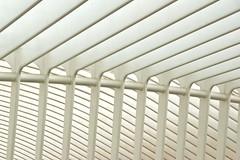 Steel construction (Pavlov-B) Tags: architecture architectuur guillemins