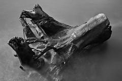 Passing Time (Brian Pemberton) Tags: longexposure oregon canon portland blackwhite log august willametteriver 2012 canon1740mmf4l passingtime brianpemberton 10stopneutraldensity