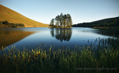 BEACONS RESERVOIR....WALES (IMAGES OF WALES.... (TIMWOOD)) Tags: wood uk blue trees sky sun lake mountains reflection nature water pool grass southwales wales reflections countryside tim gallery close sony natureza www reservoir hills com alpha brecon beacons mid a700 bewiahn