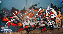 CC D2 04 VOGEY (Anarchivist Digital Photography) Tags: df denver creatures vm rtd eaks vogey coloradocrush2012