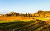 (alliance1) Tags: italy color landscape explore tuscany redo leicam9 50mmvoigtlanderf11