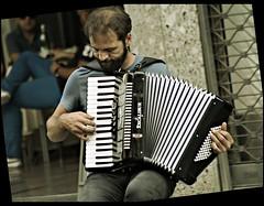 Le ragioni della fisarmonica (Toni Monroe) Tags: life street portrait italy milan canon reflex milano mani concerto musica streetmusic ritratto dita viadante fisarmonica
