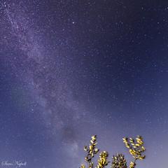nice evening (saronapoli) Tags: notte selle vialattea ragusa sicilia sterne milchstrasse nacht sizilien stars milkyway