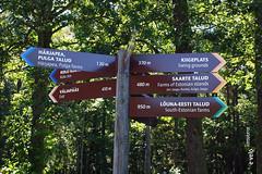 TALLIN-MUSEOS-31 (e_velo ()) Tags: 2016 summer estiu verano estonia tallin olympus e620 travels viatges viajes museums museos museus