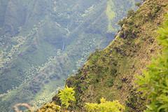 5+ of uncountable (1600 Squirrels) Tags: 1600squirrels photo 5dii lenstagged canon24105f4 tonemapped landscape pali cliff kalalau kalalauvalley waterfall kalalaulookout lookout napali coast northshore kauai kauaicounty hawaii usa westside
