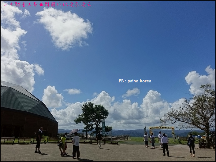 木更津母親牧場 (7).JPG