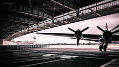 Berlin - Airport Tempelhof (Thomas Bechtle Fotografie) Tags: berlin d800 flughafentempelhof nikon airport monochrom popular places cita tempelhof aircraft old douglas