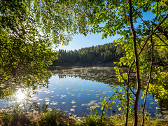 Lake view (Jens Haggren) Tags: olympus em1 fall autumn view landscape forestlake water reflections trees leaves sky colours hst lv nacka sverige sweden jenshaggren
