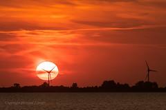Wind turbines, Husum (Howard Ferrier) Tags: sunset windfarm water germany northsea husum clouds sun tidalflat orange sea coast plain europe windturbine red schleswigholstein de elements scientificbuildings astronomy architecture time