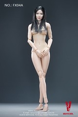 VERYCOOL TOYS VCF-X04 Asian Female Body Set - A3 (Lord Dragon ) Tags: 16scale 12inscale onesixthscale actionfigure doll hot toys verycool female