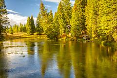 Big Springs (JuneBugGemplr) Tags: snakeriver bigsprings water river springs