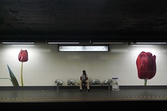 underground garden (mel-pin) Tags: tulip melpin brussels metro