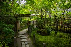 moss garden (Nanzen-ji temple, Kyoto) (Marser) Tags: xt10 fuji raw lightroom japan kyoto temple garden moss verdant path tree