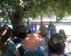 010 The Teacher And His Students (saschmitz_earthlink_net) Tags: 2016 california encino lakebalboa orienteering laoc losangelesorienteeringclub losangeles losangelescounty lakebalboaanthonycbeilensonpark