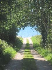 Countrylane towards the sea (Landanna) Tags: blue sea denmark blauw countrylane als bl snderjylland zuidjutland