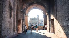 Colosseum-544 (Sophienesss) Tags: sunset italy rome roma architecture colosseum romanforum colosseo fororomano