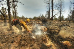 Barry_Point_Fire_18 (BLMOregon) Tags: fire firefighter hdr instragram art artistic blm bureauoflandmanagement oregon forestservice usfs protect preserve closeup orange yellow helmet safetygear water smoke dramatic tree trees forest publicservice wildland doi interiorpacificnorthwest firefighting