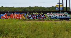 SMASH, JUNE, TANK. (NTHESTREETS) Tags: streetart art june train graffiti orlando smash tank florida graf railway trains vandalism boxes spraypaint boxcar graff aerosol freight boxcars vandals freights