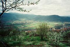 (Nemanja Kneevi) Tags: color film field landscape serbia srbija kolor nemanja pejzaz aorist knezevic nemanjaknezevic nkrs