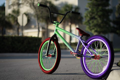 BMX Bike (BradleyGoudieMedia) Tags: bmx custom bike cranks tired spoke spokes paint frame gradient colour bars handlebars clamp stem chain seat nature background
