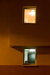 deux couleurs (Reibenberg) Tags: street city france night nikon nightshot lumire rue 93 nuit iledefrance fentre nocturne ville idf fenetre pantin seinesaintdenis digitalcameraclub imeuble d700 93500 reibenberg
