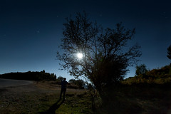 moon gazing (ChrisBrn) Tags: shadow sky moon man tree silhouette stars moonlight