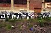 (Into Space!) Tags: city urban art philadelphia graffiti photo urbanart amtrak awr philly msk graff piece 2008 nekst intospace intospaces