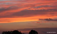 787 Cores de Setembro (tinalves My Eyes) Tags: sunset sol do alentejo por entardecer tinalves