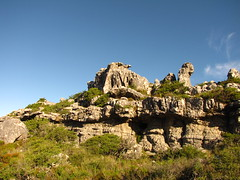 cape town - table mountain (meeeeeeeeeel) Tags: africa travel green tourism nature beauty southafrica nightlights natural capetown tablemountain mozambique maputo moz moambique cidadedocabo kaapstad southernafrica belezasnaturais africancity ikapa urbanafrica