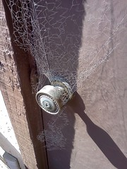 Halloween Decorations Storage Room (J R Webb) Tags: spider doorknob seagate webs