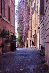 Callejeando por Roma III (Leandro Fridman) Tags: road street urban roma calle nikon italia urbano d60