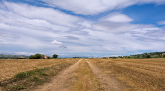 On The Road (lorenzapanizza) Tags: recanati ontheway sky cloud space lanscape landscapephotography nikond7100 clouds
