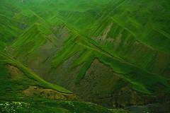5 (pomalutku) Tags: grass green mestia kaukaz mountains mountain hill hills fields field landscape nikon d7100 nature