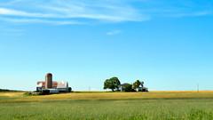 Farm, Northumberland County, Ontario (duaneschermerhorn) Tags: farm green sky clouds blue storm stormclouds field buildings silo tower