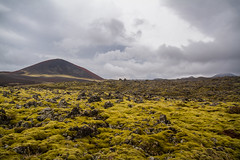 Berserkjahraun 45 (raelala) Tags: 2016 berserkjahraun snaefellsnes snaefellsnespeninsula canon1785mm crater europe europeantravel iceland icelanding2016 lava lavafield photographybyrachelgreene ringroad roadtrip scandinavia thatlalagirl thatlalagirlphotography thatlalagirlcom travel
