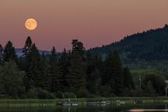 Mondaufgang am Pinantan Lake, British Columbia (vivalatinoamerica) Tags: kanada mond pinantanlake see mondaufgang vollmond british columbia