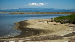 Banco d'Orio (Skylark92) Tags: italy friuli laguna di marano banco dorio mountains italie venezia giulia