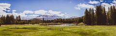 IMG_8590-Panorama (henrigalimberti) Tags: yosemitenationalpark california tatsunis us