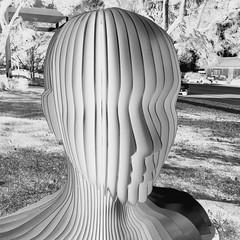 Mutualism (Thomas Hawk) Tags: america burbank burbanklibrary california losangeles mutualism ohsoonmi usa unitedstates unitedstatesofamerica library sculpture us fav10 fav25 fav50
