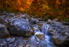 Allgäu (dkphotographs) Tags: allgäu germany bavaria nature autumn river longexposure sonyalpha57 trees orange country landscape wildlife countryside fall water