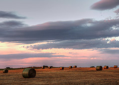 bales at sunset (BradleyA) Tags: sunset field clouds canon landscape texas cut feed hay bales hdr haybale mckinney