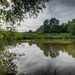 224/366 New Pond