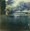 * (Lisa Toboz) Tags: selfportrait overgrown fairytale garden polaroid pittsburgh shadyside haunted redhead lush slr680 reddress mellonpark instantfilm utatafeature impossibleproject px680colorshadecool polaroidweek2012