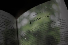 58/365 - Staying in with Mr.Potter (Jonny Cairns) Tags: harrypotter prisonerofazkaban 365project 58365 chapter12 thepatronus