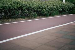 (denull) Tags: portrait london flat sony 14 40mm alpha director nokton dimo nex5 nex5n