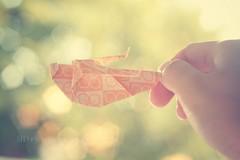 Day 249/366 - Grasshopper (MPhotography.) Tags: 50mm origami bokeh pastel canon450d beyondbokeh